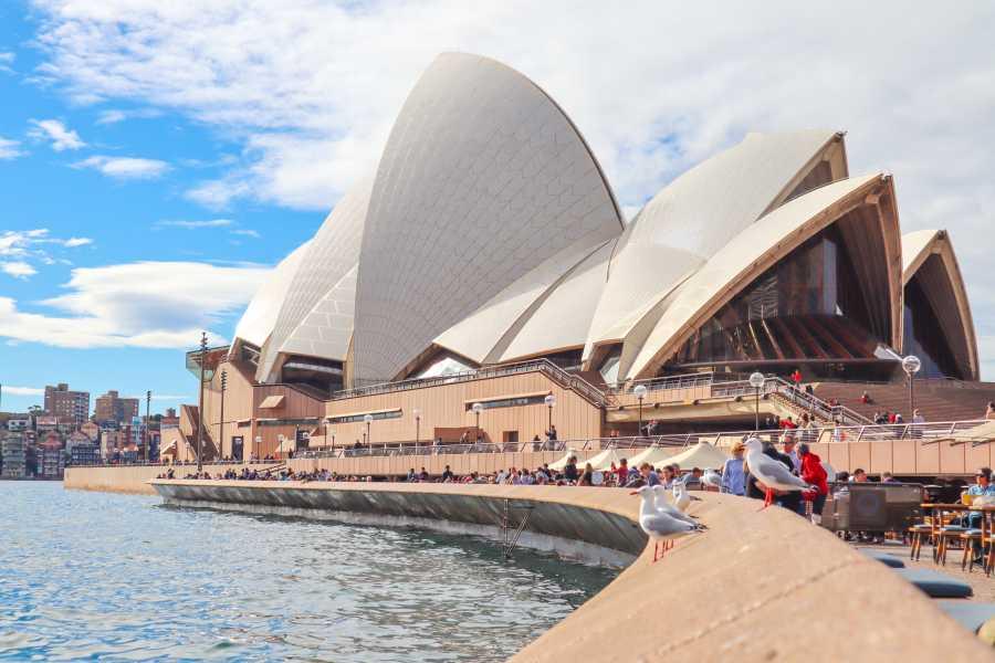 English Australia requests $87 million Coronavirus rescue package